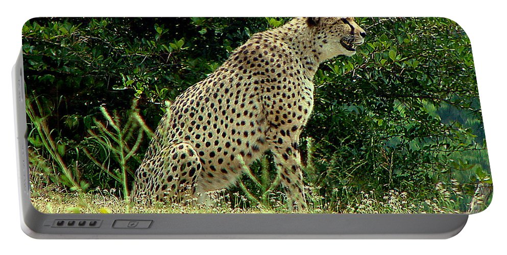 Cheetah Portable Battery Charger featuring the photograph Cheetah-79 by Gary Gingrich Galleries
