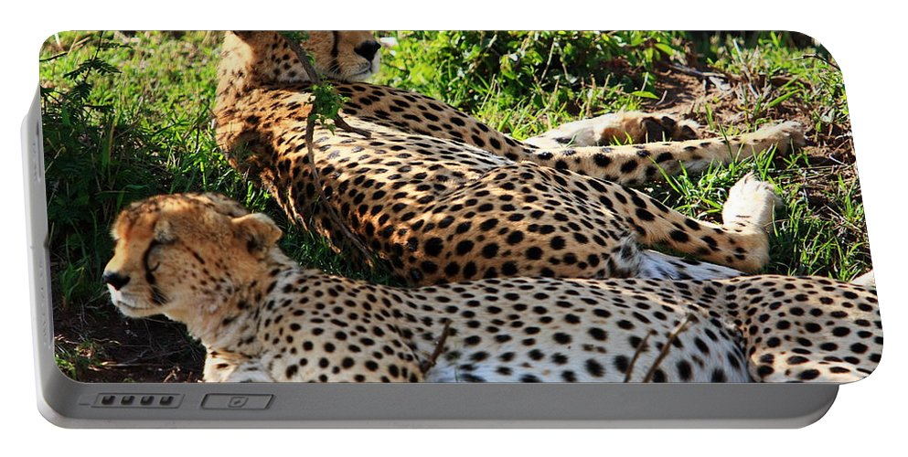 Cheetah Portable Battery Charger featuring the photograph Cheetah - Masai Mara - Kenya by Aidan Moran