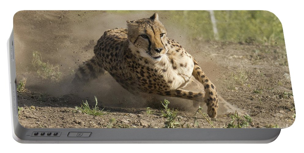 Cheetah Portable Battery Charger featuring the photograph Cheetah Run 2 by Dianne Phelps