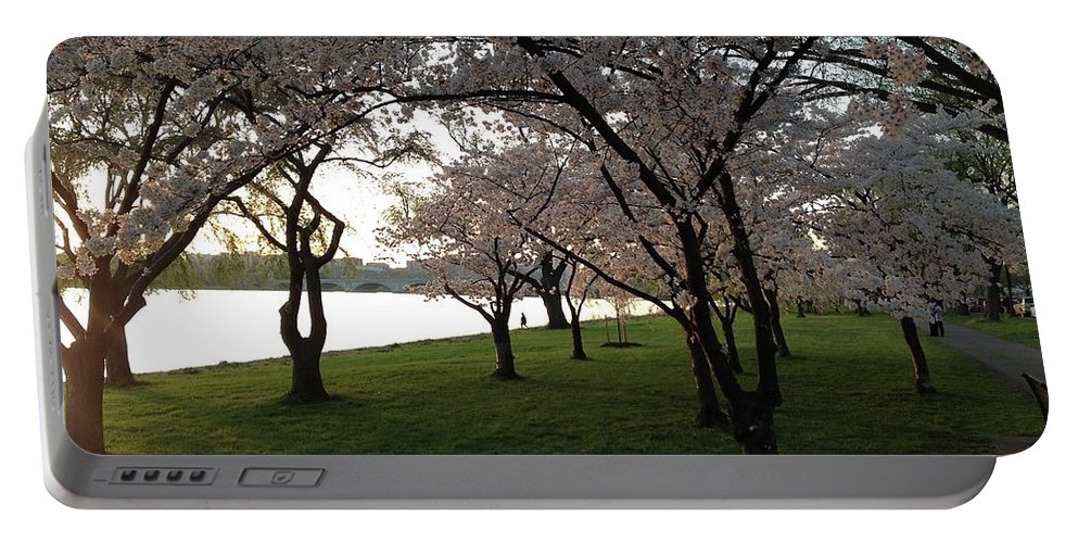 Cherry Blossoms Portable Battery Charger featuring the photograph Cherry Blossoms Along The Potomac by Lois Ivancin Tavaf