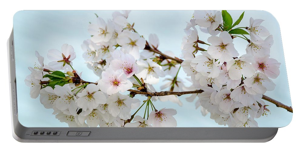 Dc Cherry Blossom Festival Portable Battery Charger featuring the photograph Cherry Blossoms No. 9146 by Georgette Grossman