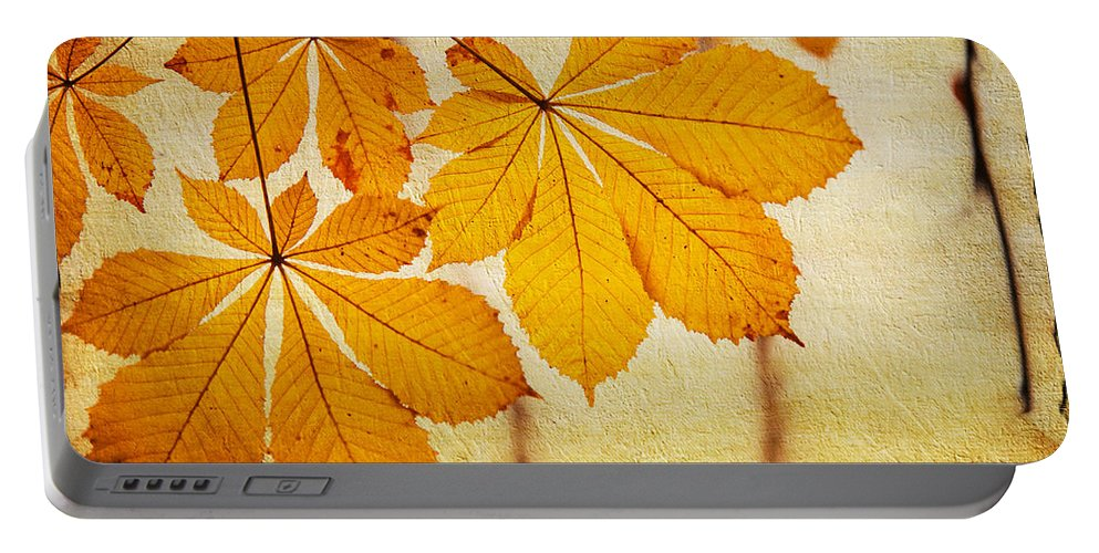 Jenny Rainbow Fine Art Photography Portable Battery Charger featuring the photograph Chestnut Leaves At Autumn by Jenny Rainbow