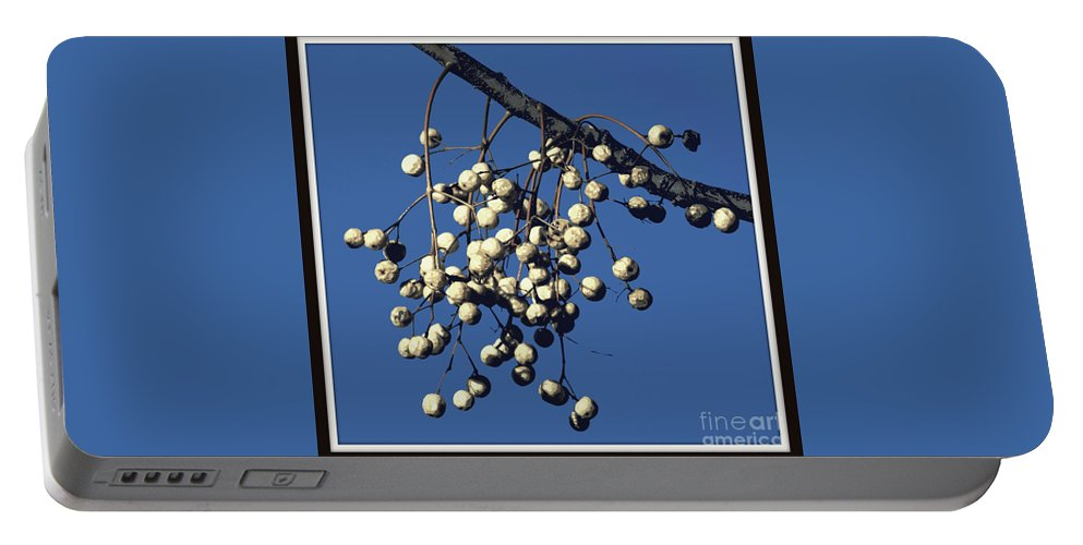Tree Print Portable Battery Charger featuring the photograph China Berry Cluster by Joe Jake Pratt