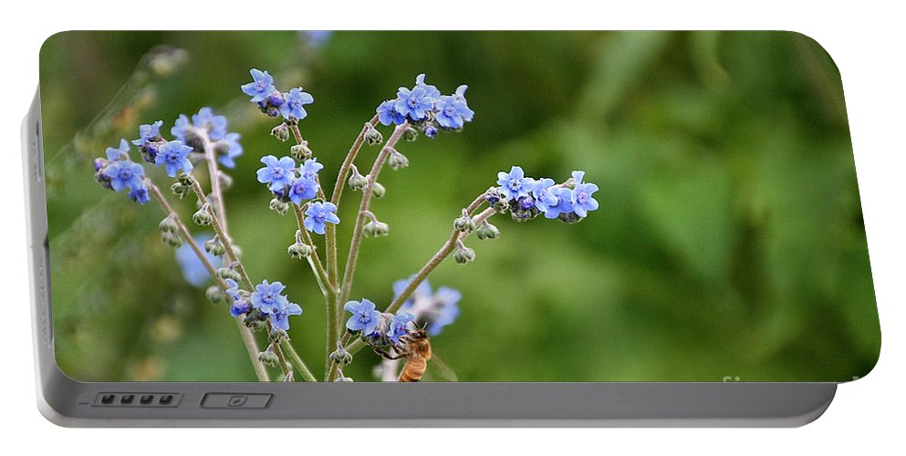 Flower Portable Battery Charger featuring the photograph Chinese Forget Me Nots by Susan Herber