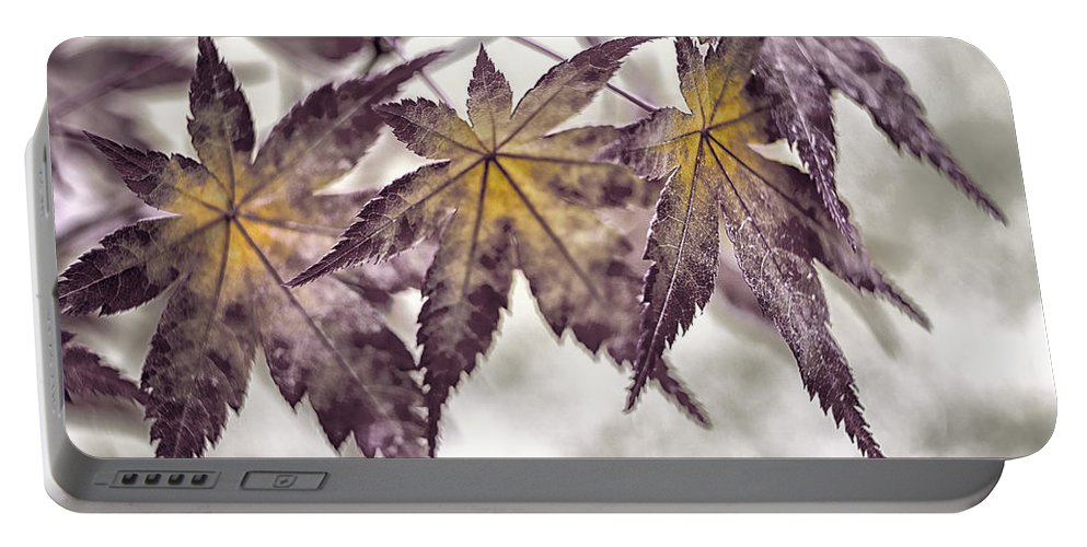 Japanese Maple Portable Battery Charger featuring the photograph Chorus Line by Caitlyn Grasso