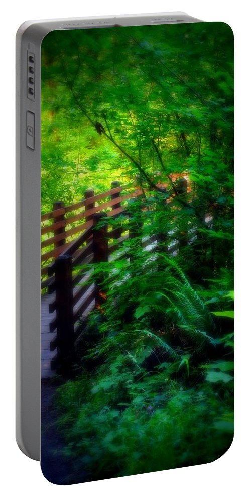 Nature Portable Battery Charger featuring the photograph Chosen Path by Amanda Eberly-Kudamik