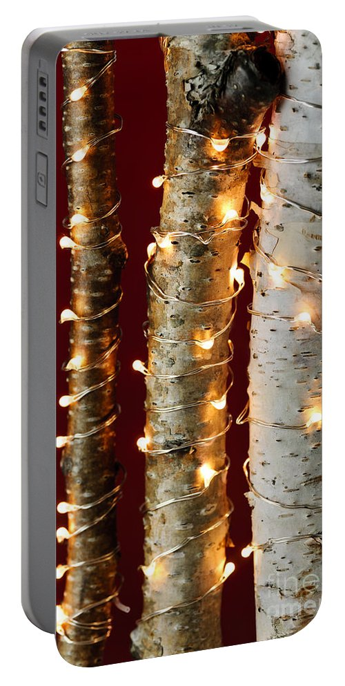 Christmas Portable Battery Charger featuring the photograph Christmas Lights On Birch Branches by Elena Elisseeva