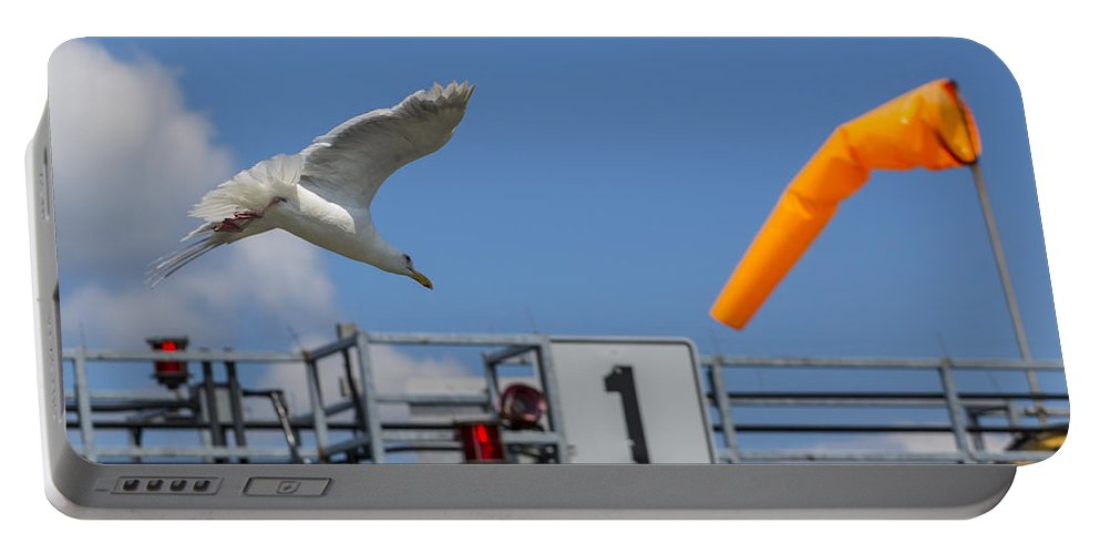 Seagull Portable Battery Charger featuring the photograph Cleared For Landing by Scott Campbell