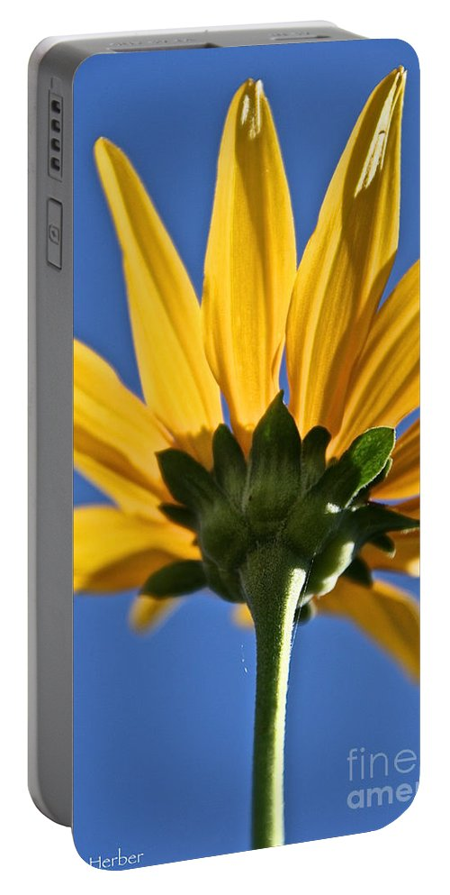 Flower Portable Battery Charger featuring the photograph Clearly by Susan Herber