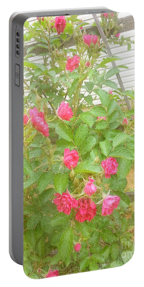 Trellis Portable Battery Charger featuring the photograph Climbing Roses by Alys Caviness-Gober