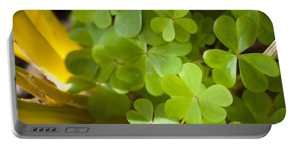 Background Portable Battery Charger featuring the photograph Clover by Tim Hester