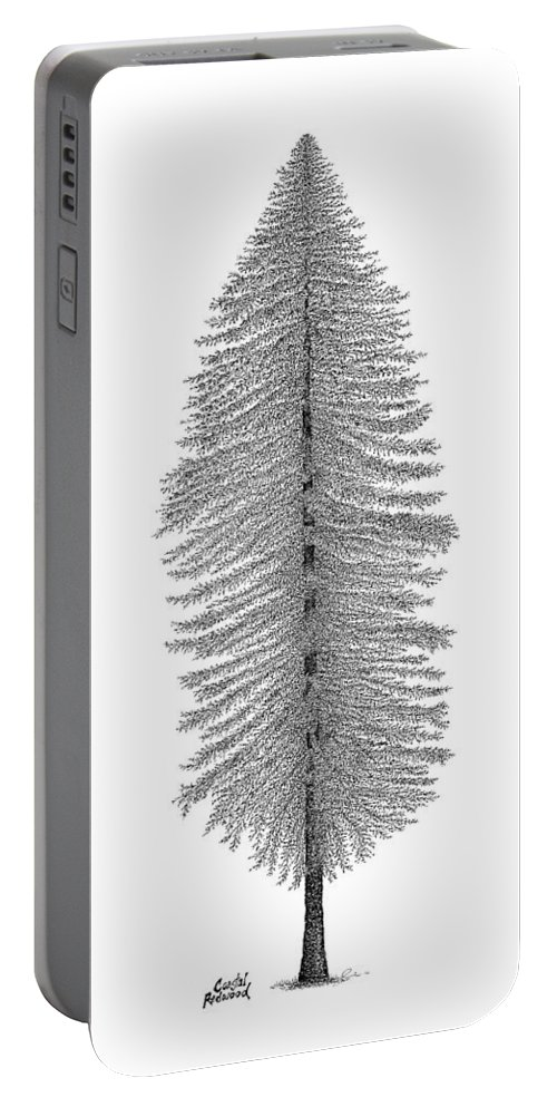Tree Portable Battery Charger featuring the drawing Coastal Redwood by Andrea Currie