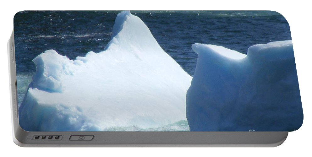Iceberg Portable Battery Charger featuring the photograph Cold Visitors by Barbara Griffin