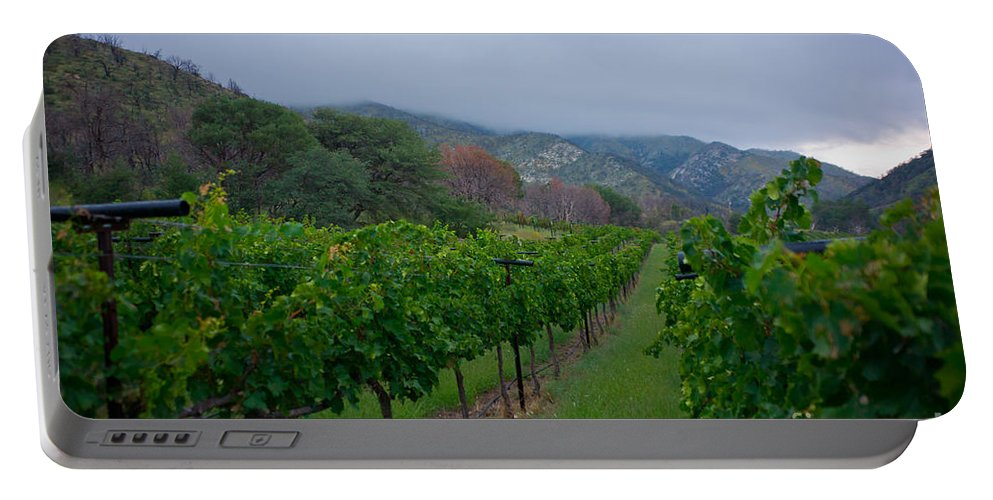 Colibri Vineyards Portable Battery Charger featuring the photograph Colibri Vineyards by Kent Nancollas