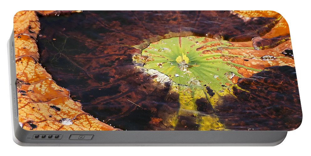 Black Bayou Lake National Wildlife Refuge Monroe Louisiana Colored Lily Pads Large Big Pad Detail Water Still Life Nature Portable Battery Charger featuring the photograph Color And Detail by Bob Phillips