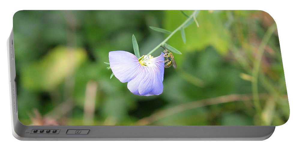Purple Flower Portable Battery Charger featuring the photograph Color Orchid Bee by Greg Joens