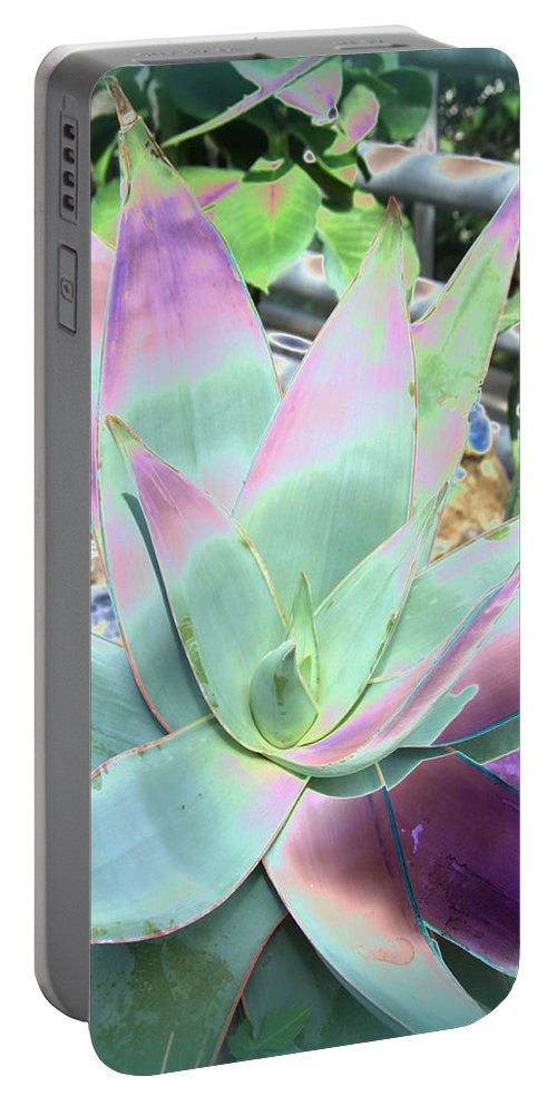 Aloa Vera Portable Battery Charger featuring the photograph Colorful Aloa Vera by Christiane Schulze Art And Photography