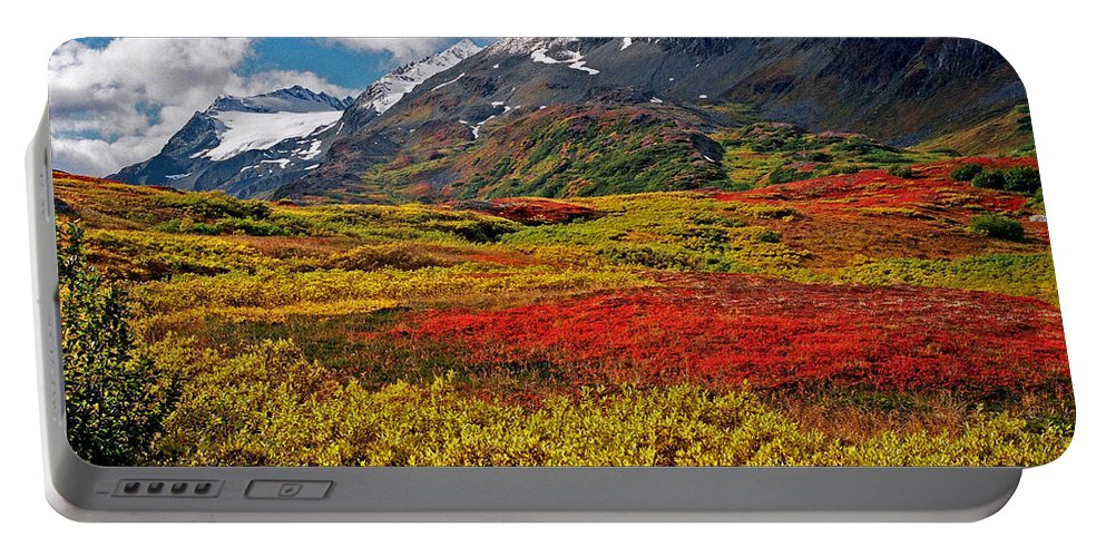 Alaska Portable Battery Charger featuring the photograph Colorful Land - Alaska by Juergen Weiss