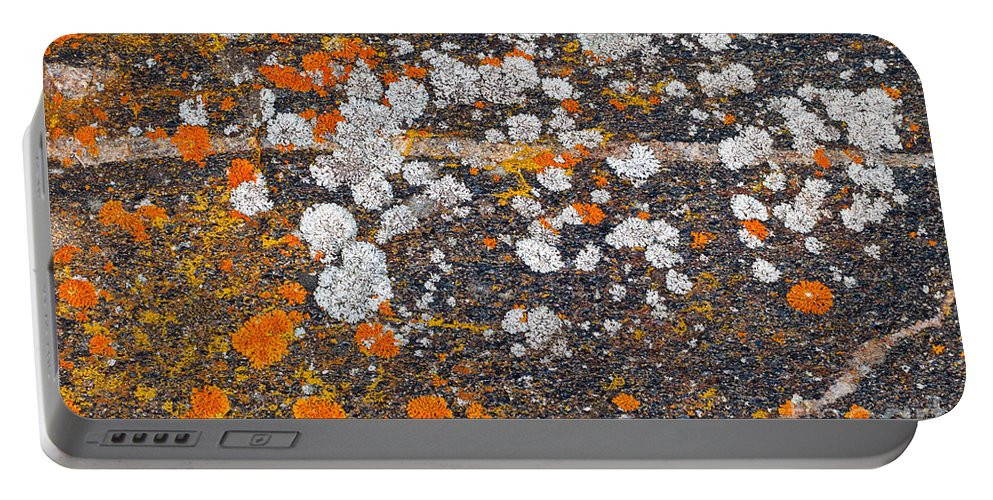 Moss Portable Battery Charger featuring the photograph Colorful Moss Spots On A Gneiss Rock by Les Palenik