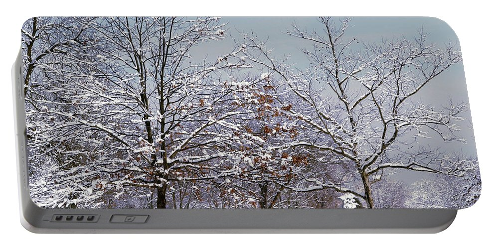 Winter Portable Battery Charger featuring the photograph Colors Of Winter by Living Color Photography Lorraine Lynch
