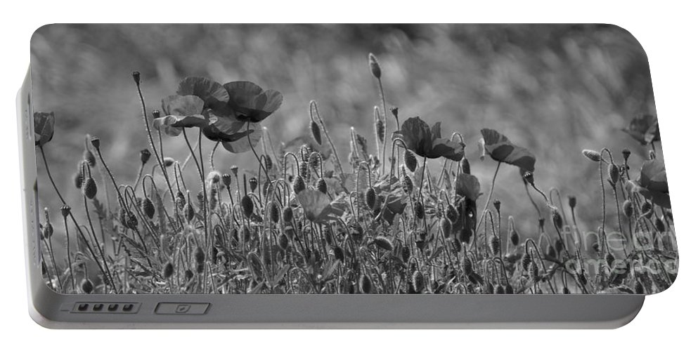 Poppies Portable Battery Charger featuring the photograph Colour Blind Poppies 2 by Carol Lynch