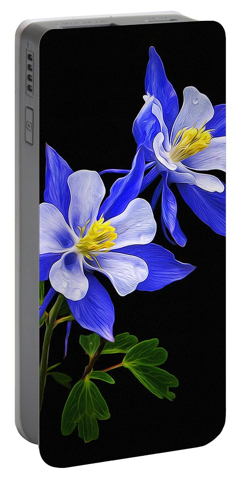 Columbine Portable Battery Charger featuring the photograph Columbine Duet by Priscilla Burgers