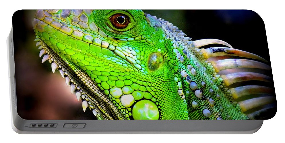 Iguanas Portable Battery Charger featuring the photograph Come A Little Closer by Karen Wiles