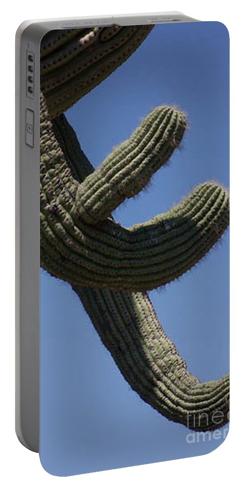 Saguaro Portable Battery Charger featuring the photograph Come Hither by Kathy McClure
