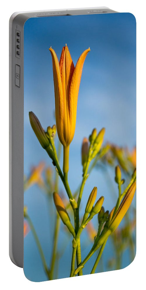 Orange Portable Battery Charger featuring the photograph Coming Attractions by Bill Pevlor