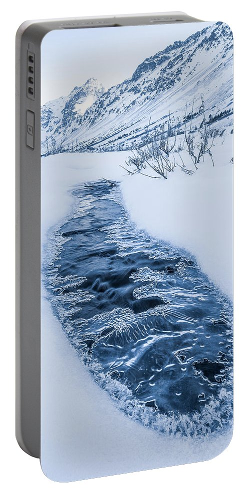 Landscape Portable Battery Charger featuring the photograph Coming Up For Air by Tim Newton