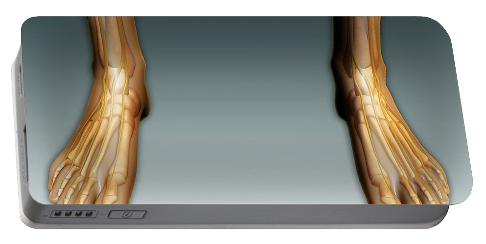 Horizontal Portable Battery Charger featuring the digital art Conceptual Image Of Human Legs And Feet by Stocktrek Images