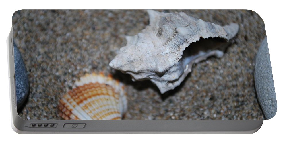 Conch Portable Battery Charger featuring the photograph Conch 2 by George Katechis