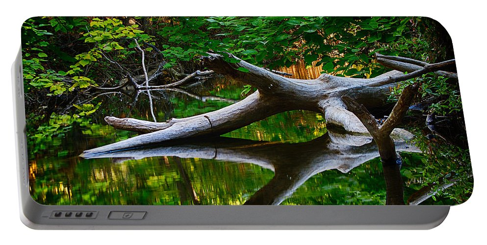 Bidwell Portable Battery Charger featuring the photograph Contemplation by Robert Woodward