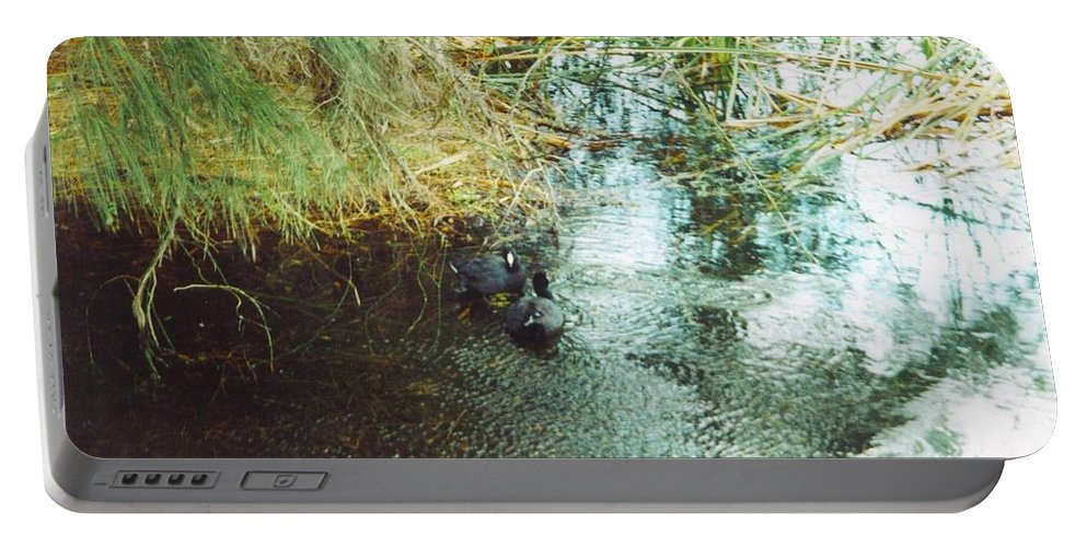 Lakes Park In Ft.myers Portable Battery Charger featuring the photograph Coots by Robert Floyd