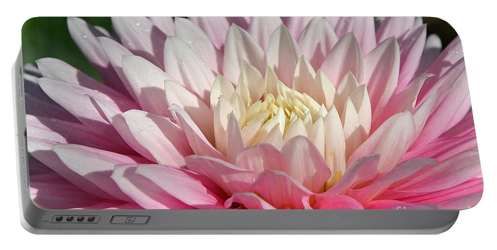 Flower Portable Battery Charger featuring the photograph Coral Dahlia by Susan Herber