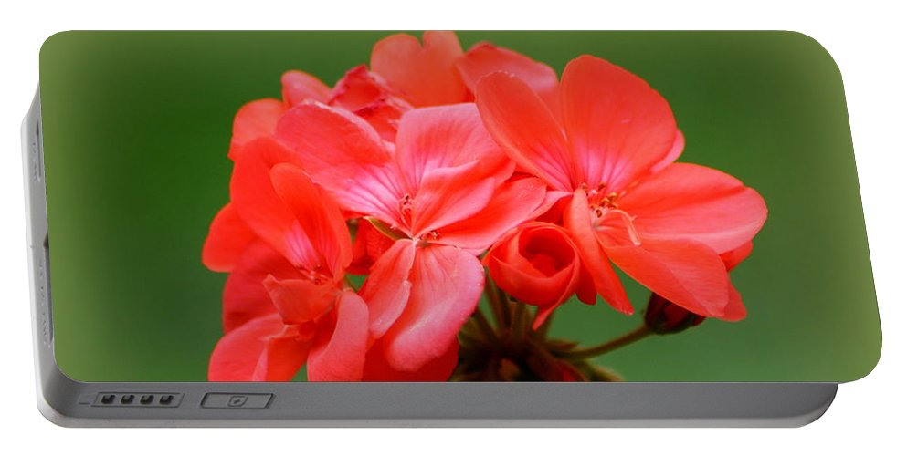Coral Geraniums Portable Battery Charger featuring the photograph Coral Geraniums by Patti Whitten