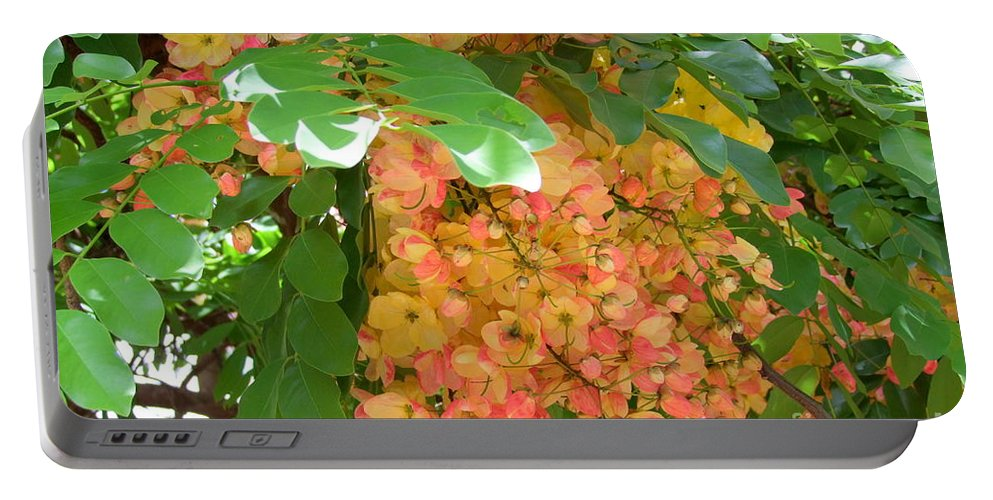 Shower Tree Portable Battery Charger featuring the photograph Coral Shower Tree by Mary Deal