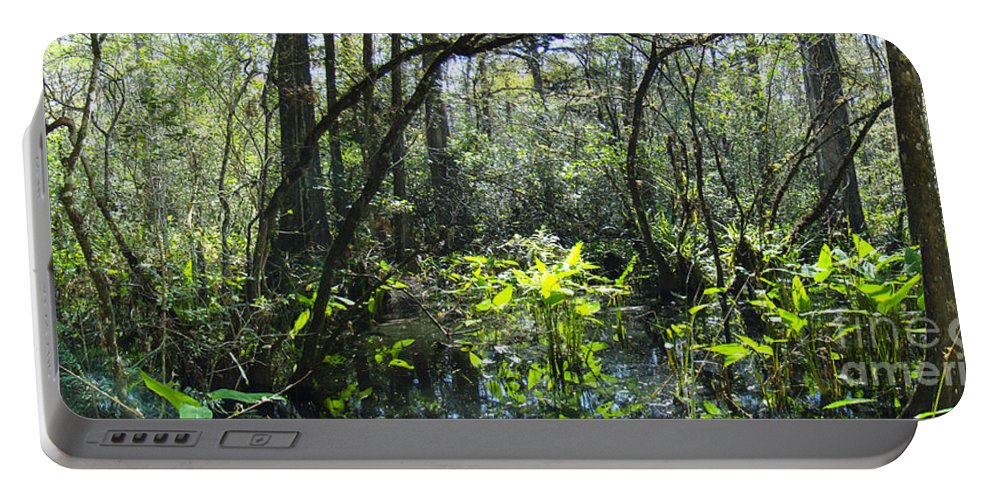 Corkscrew Portable Battery Charger featuring the photograph Corkscrew Swamp 17 by Nancy L Marshall