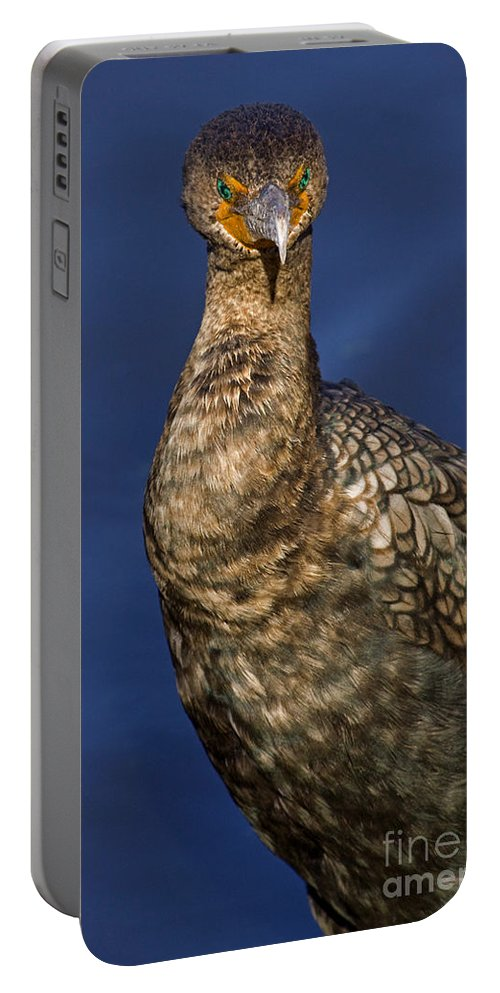 Bird Portable Battery Charger featuring the photograph Cormorant by J L Woody Wooden
