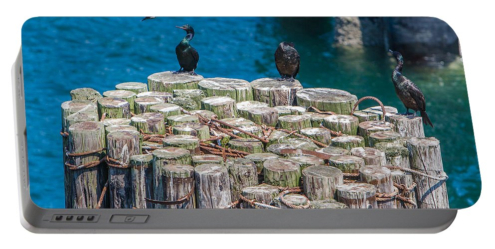 Black Portable Battery Charger featuring the photograph Cormorant Landing by Scott Campbell