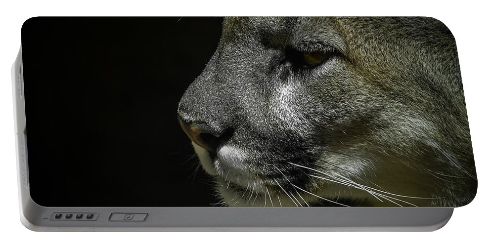 Mountain Lion Portable Battery Charger featuring the photograph Cougar by Ernie Echols