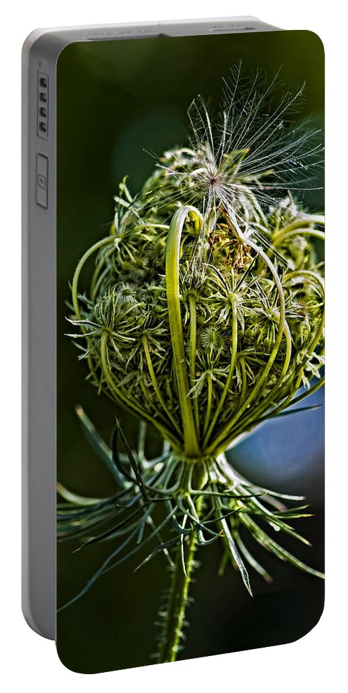 Weed Portable Battery Charger featuring the photograph Countdown by Steve Harrington
