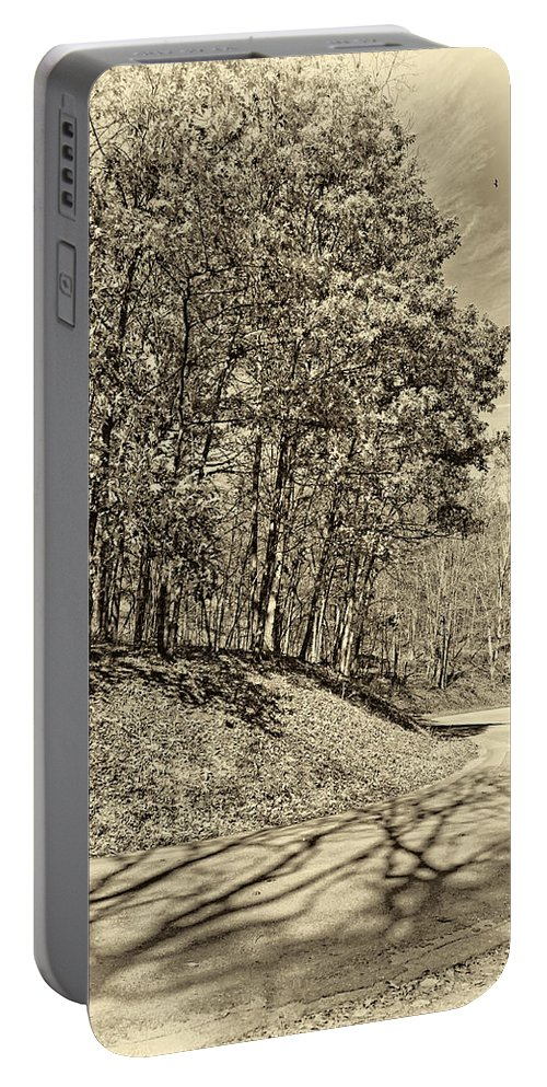 West Virginia Portable Battery Charger featuring the photograph Country Curves And Vultures Sepia     by Steve Harrington
