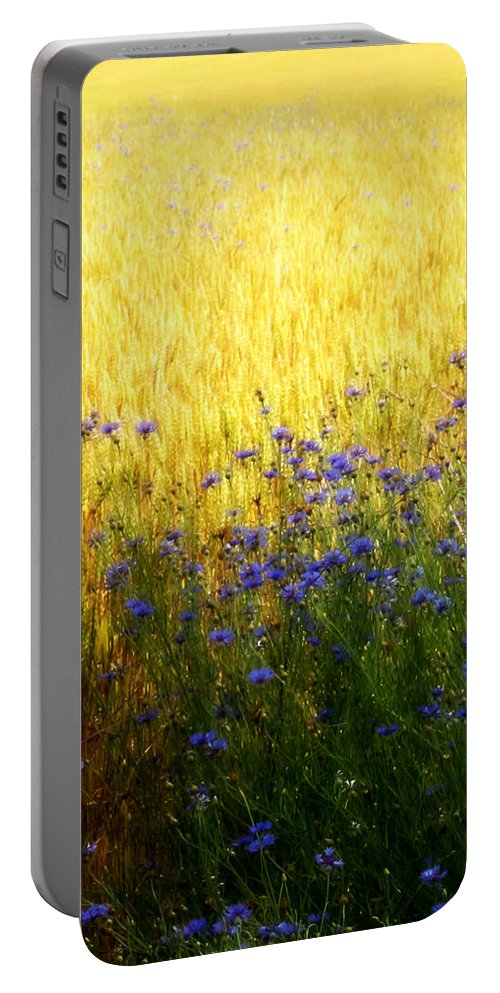 Lovely Portable Battery Charger featuring the photograph Country Road 2 by Tina Meador
