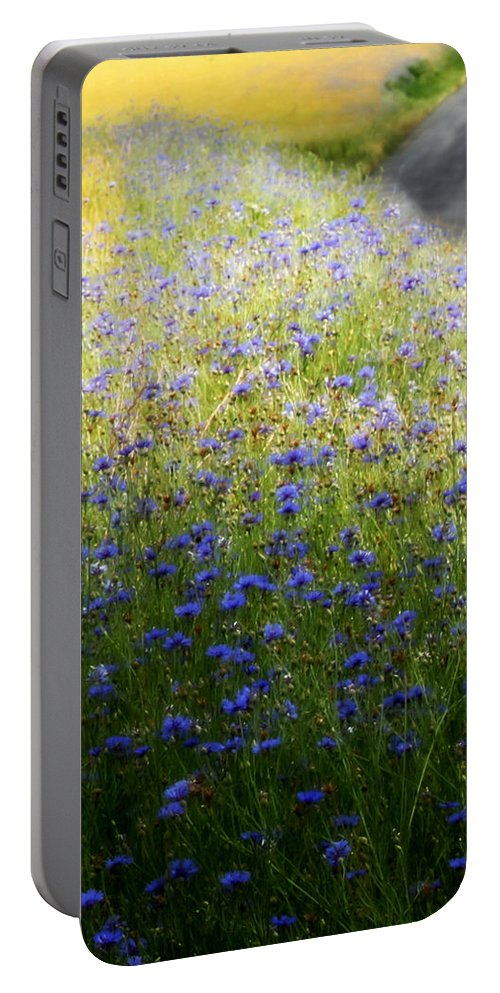 Lovely Portable Battery Charger featuring the photograph Country Road 3 by Tina Meador