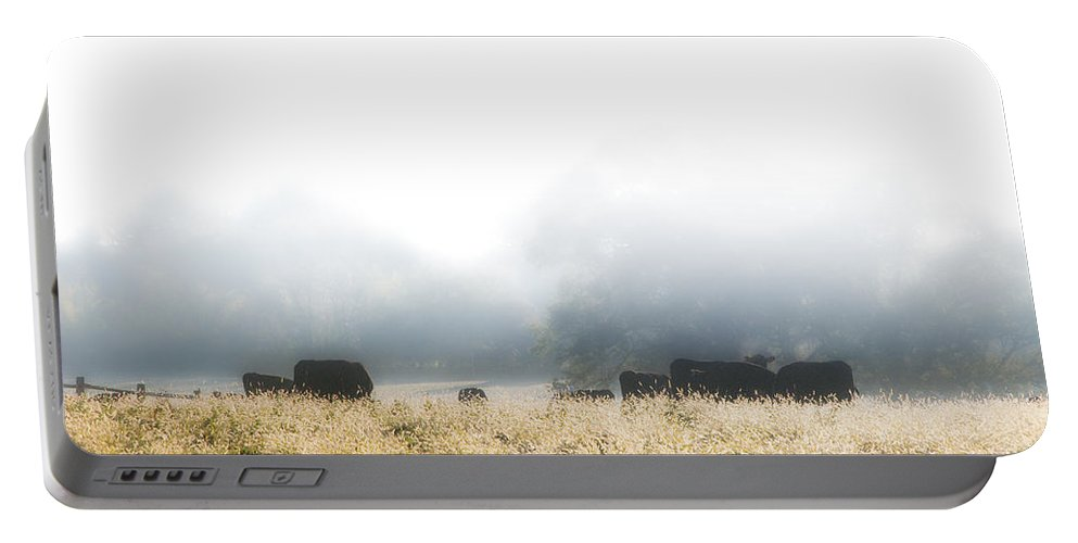 Cows Portable Battery Charger featuring the photograph Cows In A Foggy Field by Bill Cannon