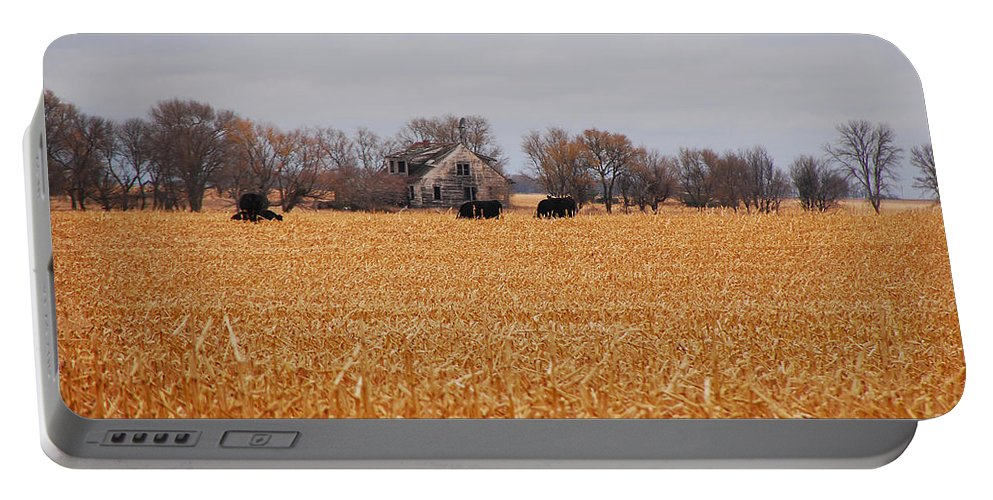 Landscape Portable Battery Charger featuring the photograph Cows In The Corn by Mary Carol Story
