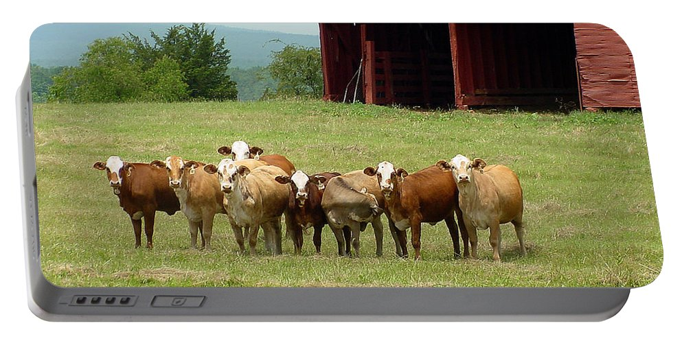 Cow Portable Battery Charger featuring the photograph Cows8918 by Gary Gingrich Galleries