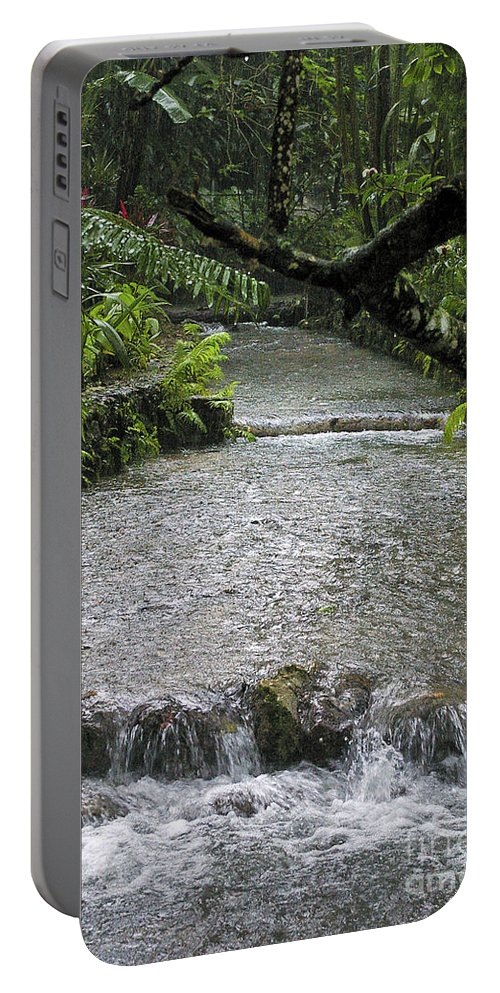 Jamaica Portable Battery Charger featuring the photograph Coyaba River Gardens 6 by Nancy L Marshall