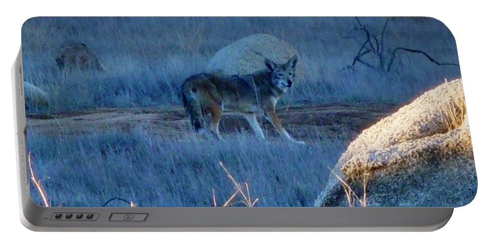 Coyote Wild Portable Battery Charger featuring the photograph Coyote Wild by Susan Garren